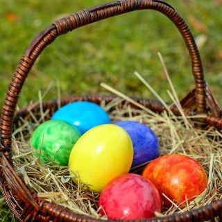 Find the best Easter egg hunts and celebrations