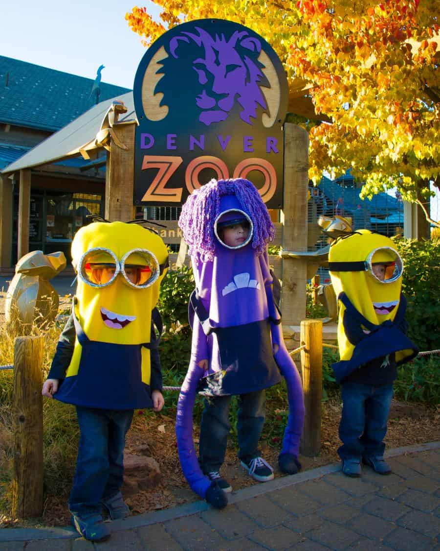 Get Tickets For Wild Fall Events At Denver Zoo